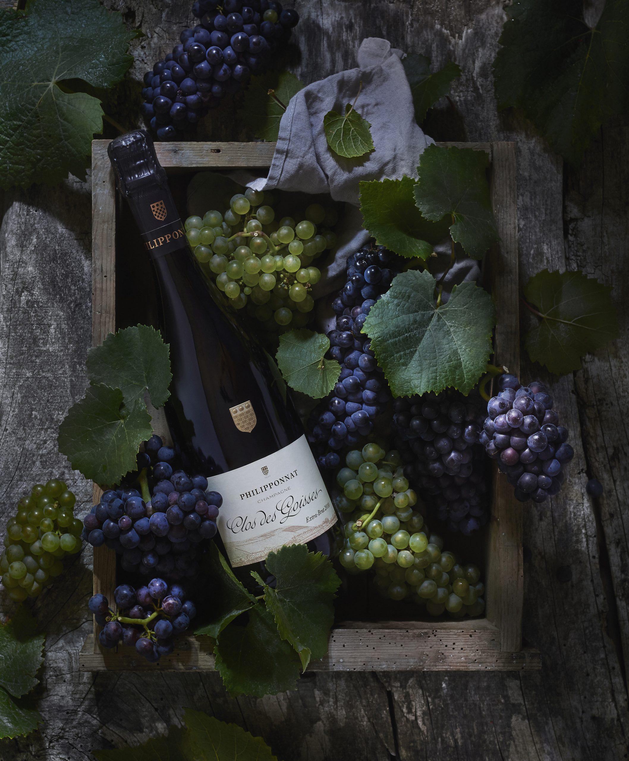 Clos des Goisses Extra-Brut 2009 - Champagne Philipponnat