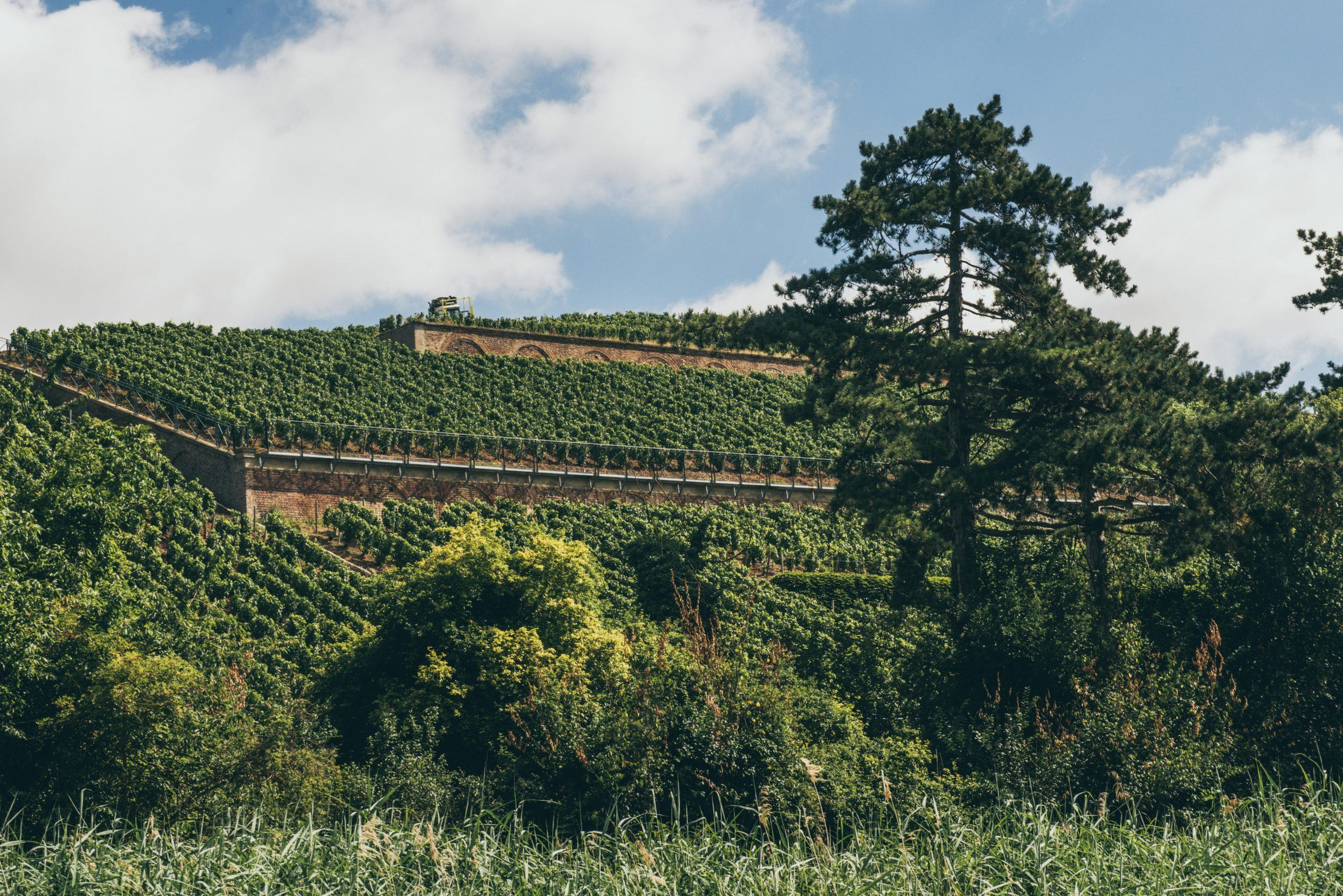 Clos des Goisses L.V. Extra Brut 1992 - Champagne Philipponnat