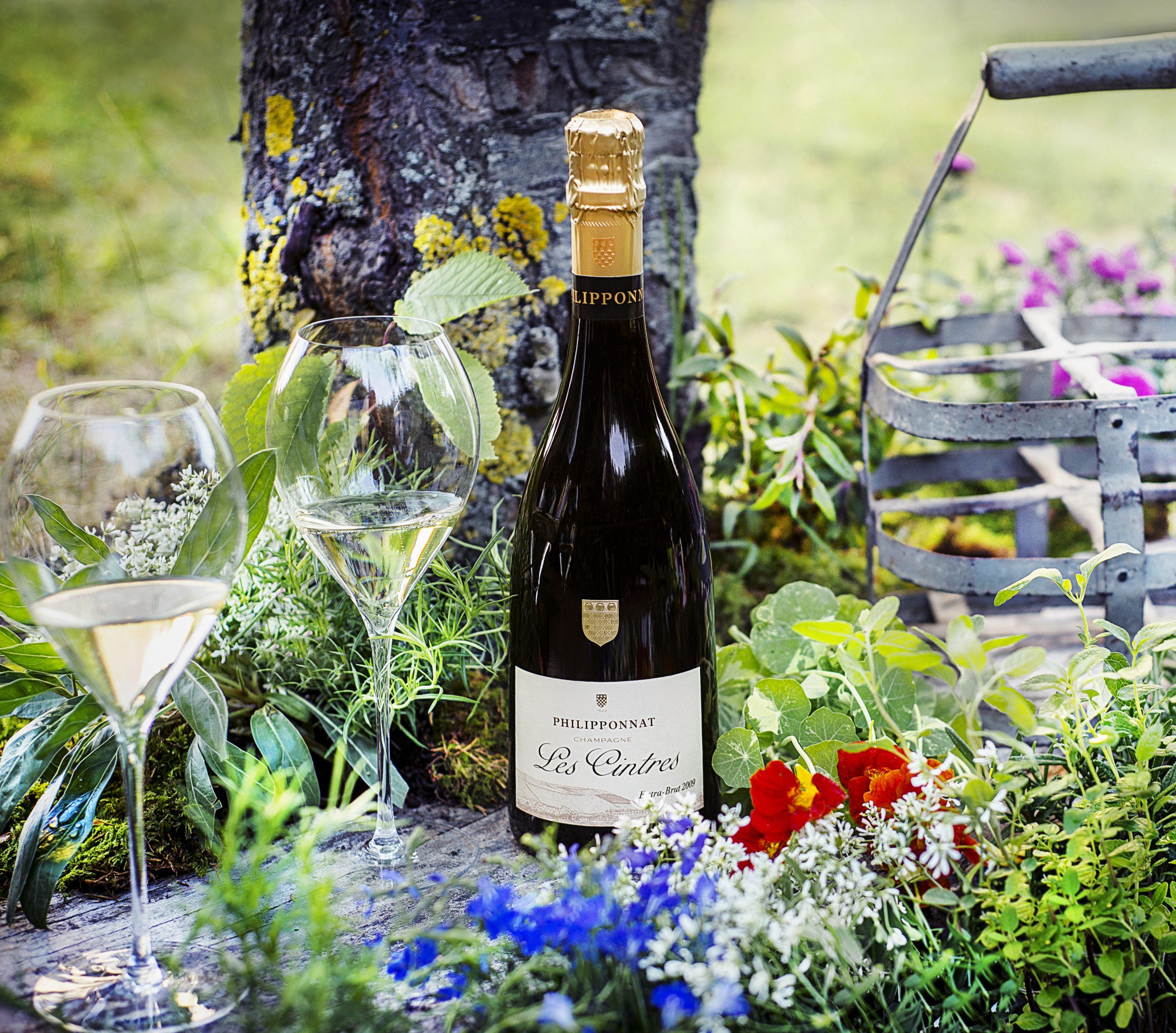 Les Cintres Extra Brut 2009 - Champagne Philipponnat